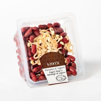 fagioli-rossi-e-germogli-di-legumi-larocca