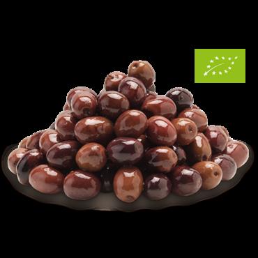 Olive nere Leccino Biologiche